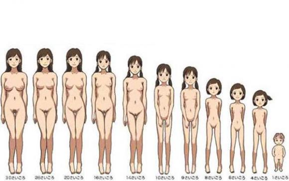 少女胸部发育图介绍